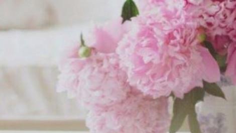 Sokat elárul rólad, hogy mi a kedvenc virágod! VIRÁGHOROSZKÓP
